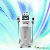 spa or salon or clinic 10.4inch touch color screen fat freezing cryo lipolysis cryolipolysis cold body sculpting machine