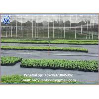 Buy cheap Ground Cover Net Commercial Grade 880 Sq Ft Roll Landscape & Erosion Control Fabric from wholesalers