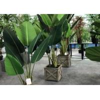 Wholesale Modern Artificial House Plants Living Room Faux Traveller Tree Plastic Potted from china suppliers