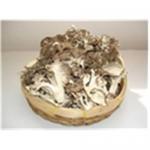 Buy cheap Sliced Maitake Mushroom from wholesalers