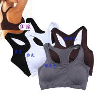 Buy cheap Black Elastic Customized Anti-Static Shock Absorber Padded OEM Front Closure Sports Bra from wholesalers