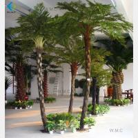 Wholesale Greenery Fibre Artificial Palm Trees For Landscaping Decoration Various Size from china suppliers