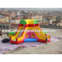 Wholesale Home Use Inflatable Slide And Bouncer Combo For Children