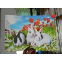 Wholesale China OK3D RIP 3D technology PET 3D lenticular photo printing Poster-High definition lenticular 3d picture from china suppliers