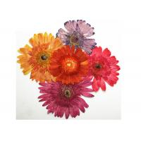 Yellow Chrysanthemum Dried Flower Arrangements For Festive / Party Decoration