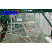 Buy cheap poultry equipments broiler cage/ cage for growing broiler chicken from wholesalers