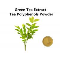 Buy cheap High Standard Green Tea Extract 1000mg, Pure Natural Green Tea Extract Fat Loss For Food And Drink from wholesalers