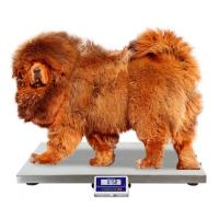 Buy cheap 75 100 200 Kg Dog Weight Scale / Pet Weighing Scales With Anti - Slip Mat from wholesalers