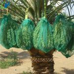 Buy cheap 100% virgin polyethylene PE net bags for vegetables date palm packaging from wholesalers