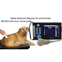 Wholesale Handheld Veterinary ultrasound scanner EW-B10V with Micro-Convex probe C5R10 for abdominal, cardiac and reproduction of from china suppliers