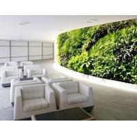 Wholesale High Simulation Artificial Plants Wall Vertical Garden Decoration for Interior Landscaping from china suppliers