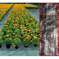 Buy cheap PP woven geotextile 160g/sqm from wholesalers