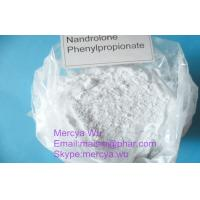 Buy cheap Anabolic Oral Androl Bulking Cycle Steroids , Oxymetholone Bodybuilding Building Powder from wholesalers