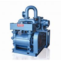 China Vacuum Systems used in Pharmaceutical Industry Drying Process on sale