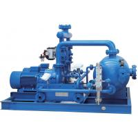 Buy cheap Professional Water Ring Vacuum Pump Units Energy  Saving Mechanical Seal from wholesalers