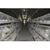 Buy cheap Broiler Poultry Farm Battery Broiler Chicken Cage & Chicken Coop with Automatic Feeding Machine for Chicken House from wholesalers