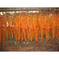 Buy cheap Lashing Chain, Tension Lever from wholesalers