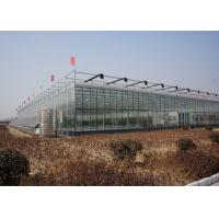 China Galvanized Pipe Double Glazed Greenhouse Good Light Transmittance Snow Resistant on sale