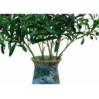 Wholesale Highly Simulated Decor Artificial Tree Branches , Plastic Tree Branches from china suppliers