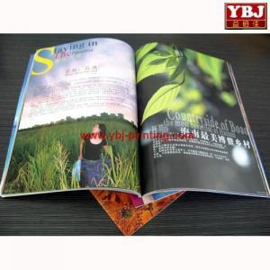 china guangzhou Cheap ybj Brochure & Flyer Printing Service Manufactures
