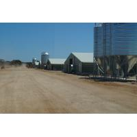 Buy cheap Commercial Automatic Poultry Farm Shed with Equipment for Broilers from wholesalers