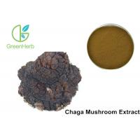 Buy cheap Chaga Mushroom Extract Phaeoporus Obliquus 30% Anti - Tumor Regulating from wholesalers