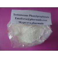 Natural Raw Anabolic Steroid Testosterone Phenylpropionate CAS 1255-49-8 Manufactures