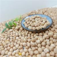 Buy cheap Chinese Factory OEM All kidney Beans and 250-270pcs/100g or 8mm,12mm Yellow Chickpeas / Garbanzo / Cicer arietinum from wholesalers