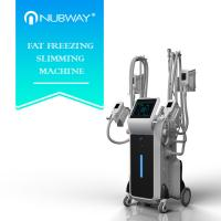 Buy cheap Fat freezing Cryolipolysis machine for whole body fat reduce from wholesalers