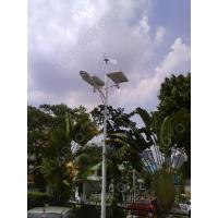 300W Wind Turbine and Solar Hybrid 48W LED Street Lights With CE Manufactures