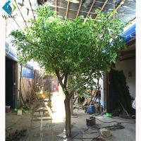 Wholesale Wood Trunk Decorative Ficus Tree , 2.5m Height Artificial Outdoor Trees from china suppliers