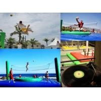Wholesale Bosssball Inflatable Court from china suppliers