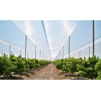 Buy cheap Greenhouses Anti Insect Screen Mesh Disease Prevention Insect Proof Mesh from wholesalers