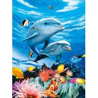 Wholesale BSCI Lenticular 3D Pictures For Hotel Decoration / 3D Animals Photos from china suppliers