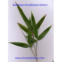 Bamboo Leaf Extract Yellow Brown Fine Powder with ISO factory