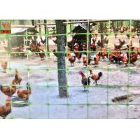 Buy cheap Green Plastic Mesh Fencing For Prevent Birds & Chicken & Pheasant , Plastic Poultry Netting , 1M High , PP Materials from wholesalers