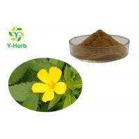 Buy cheap Damiana Leaf Herbal Extract Sexual Enhancement Ingredients Turnera Afrodisiaca P.E. Turnera Diffusa from wholesalers