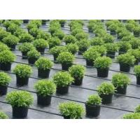 Buy cheap weed block fabric reviews Weed Control Fabrics from wholesalers