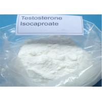 Wholesale Anabolic Steroid Powder Testosterone Isocaproate CAS 15262-86-9 for Bodybuilding from china suppliers