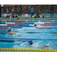 Buy cheap Good Quality Swimming Pool Float Line from wholesalers