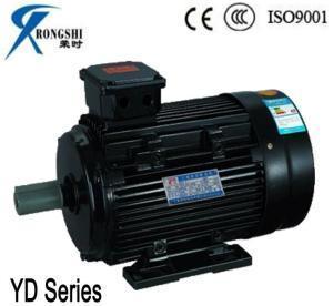 China Yd Seriers Electrical Washing Machine Motor (YD100L2-4/2) on sale