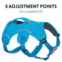Wholesale Multi - Use Dog Harness Leash Hiking Trail Running Eco Friendly With Light Loop from china suppliers