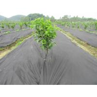 Buy cheap Landscaping Breathable Agriculture Non Woven Fabric Anti Frost Weed Killer Ground Cover from wholesalers