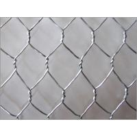 Buy cheap PVC Hexagonal Wire Netting - 25mm from Homebase from wholesalers