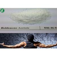 Buy cheap Healthy Injectable Anabolic Steroids Boldenone Acetate White Raw Powders CAS 2363-59-9 from wholesalers