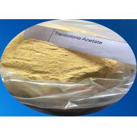Wholesale 10161-34-9 Finaplix Trenbolone Acetate Tren Anabolic Steroids Bodybuilding Yellow Crystalline Powder from china suppliers