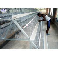 Buy cheap Chicken Layer Battery Cage Dimensions Steel Wire Material Galvanized Surface from wholesalers