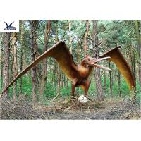 Wholesale Handmade / Assembling Pterosaurs Realistic Dinosaur Statues Width 5 Meters from china suppliers