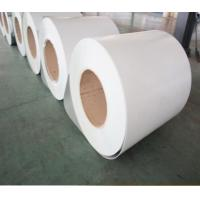 Wholesale RAL9003 Hot Dipped Galvanized Prepainted Steel Coil SGCC Grade For T Grid from china suppliers