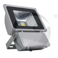 Buy cheap 100W Outdoor LED Floodlight, Project Light from wholesalers